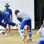 Starc relishes Donald's experience
