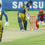 Knights frustrate Lions