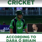 Cricket according to a comedian