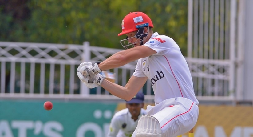 Sunfoil: Lions on rack, Dolphins fight