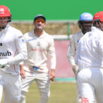 Van der Dussen, Lubbe make Titans chase leather