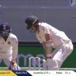 Pant's chirps caught on stump mic